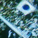 【サッカー豆知識】アルゼンチンの試合に『青い日の丸』が出現!